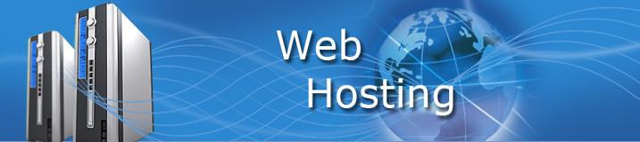 Web Hosting Website Hosting